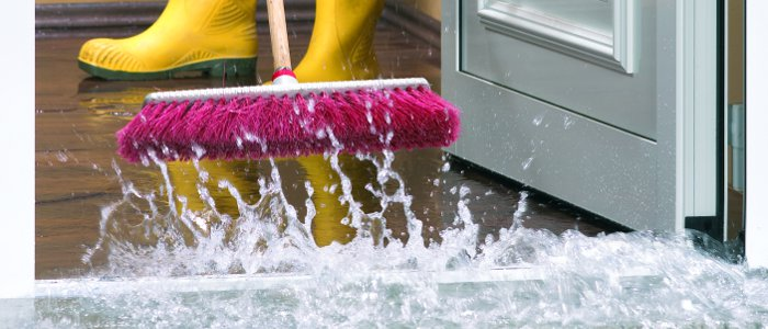 Clean and dry wet or damp spots within 48 hours