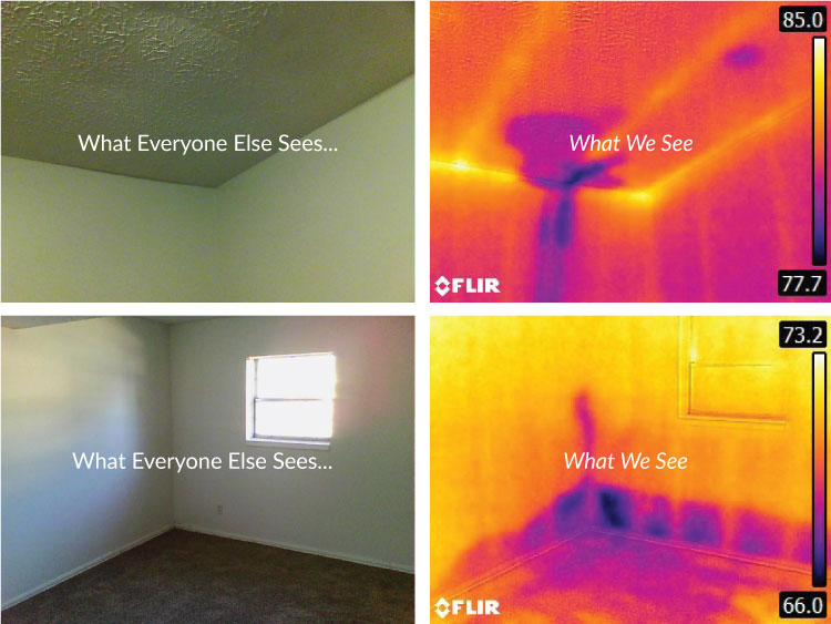 Florida Infrared Inspection
